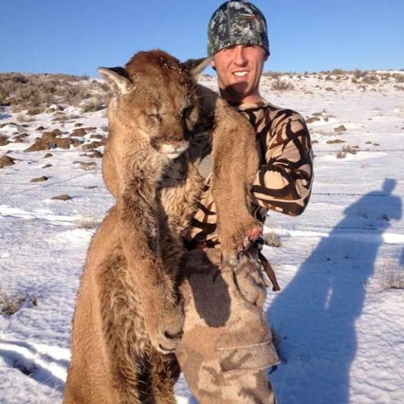 cougar kill