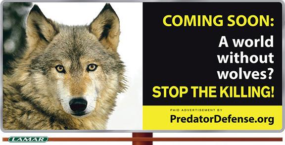 wolves_billboard_Yellowstone
