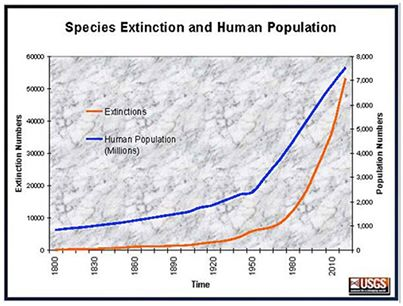 Image result for extinction overpopulation