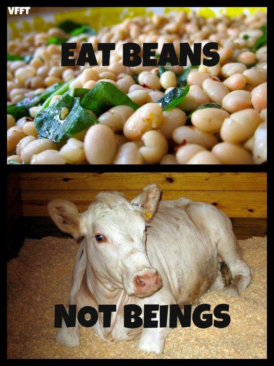 eatbeans