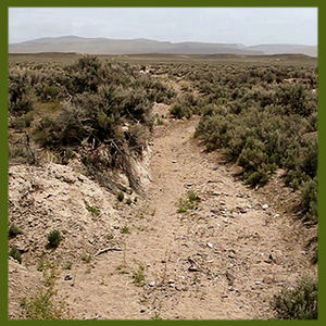 a degraded stream channel in Nevada